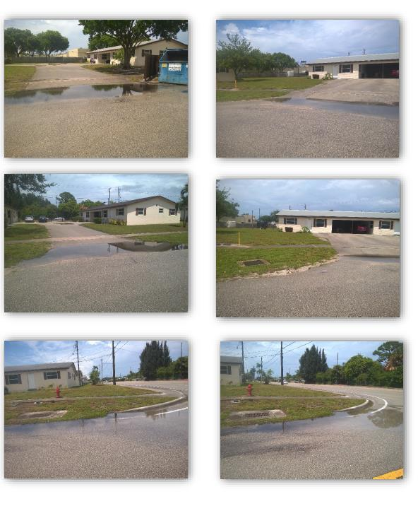 Sandra Lane multiple pictures of standing water