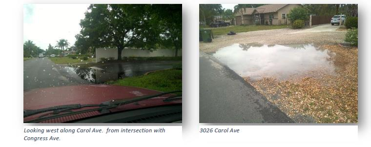 Carol Ave. standing water near S. Congress and at 3026